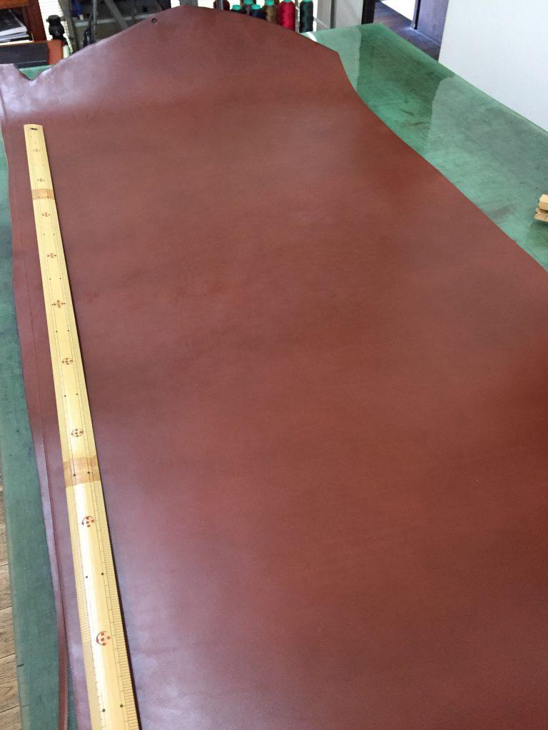 bridle new color 1