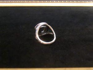 蛇のリング4