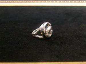 蛇のリング8