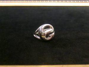 蛇のリング9