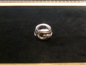 蛇のリング10