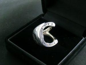 horseshoe scarfring 2